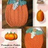 Free pattern for a pumpkin potholder