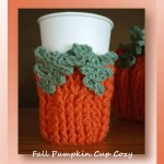 Fall Pumpkin Cup Cozy