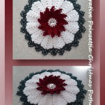 Decorative Poinsettia Christmas Potholder (Part 1)