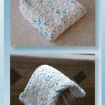 Pattern Review - Nubby Dishcloth