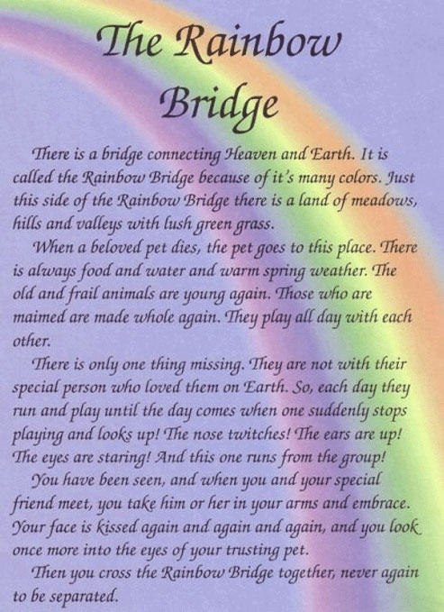 rainbow-bridge