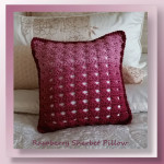 raspberry-sherbet-pillow